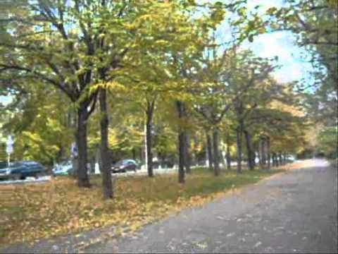 25 10 2012 Zaporizhzhya Ukraine