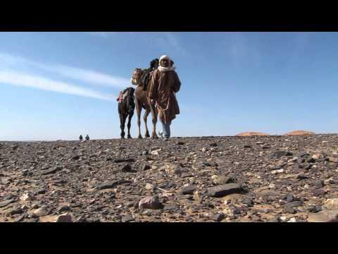 Camel Trekking in Erg Chebbi (Morocco)
