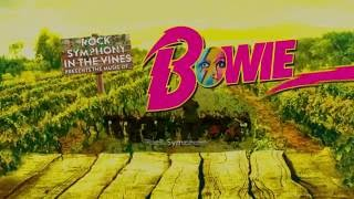Rock Symphony in the Vines presents the music of Bowie