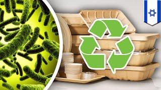 Seaweed eating microbes used to make bioplastic - TomoNews