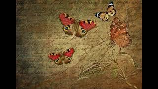 Gentle Music - Butterfly
