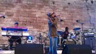 [Live] Nneka - Shining Star (Marseille Rock Festival 2012)