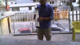 Los aguas aguas - Santeria Virgilio (cover melódica) Mario.