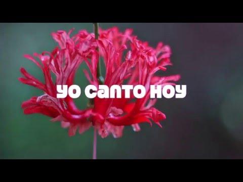 You Are En Espanol de Colton Dixon Letra y Video