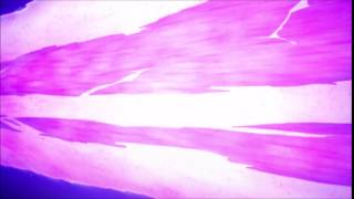 awesome gundam sound effect