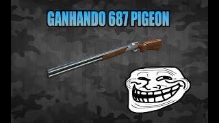 [CF/AL] GANHANDO A 687 EELL Diamond Pigeon
