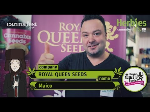 Royal Queen Seeds @ Cannafest 2014 Prague