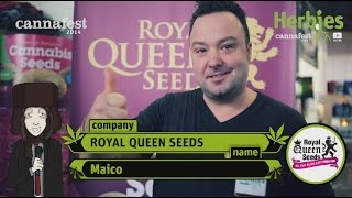 Herbie Interviews Royal Queen Seeds
