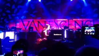 Evanescence live in Offenbach (Germany) - Lost In Paradise HD