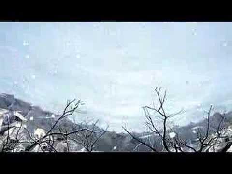 yeasayer-wait-for-the-summer-single-edit-yeasayertv