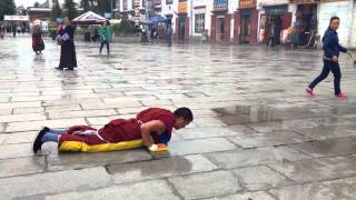 Tibetan Buddhist Monk Praying
