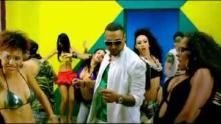 Yandel-Nunca Me Olvides Feat Don Omar Remix (Video Official)
