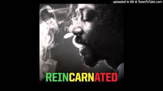 Fruit Juice (Feat. Mr. Vegas) - Reincarnated - Snoop Lion