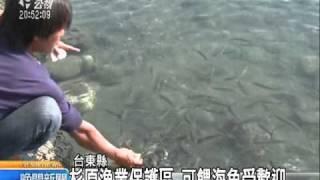 2010-12-21公視晚間新聞(杉原漁業保護區 海中步道護環境)