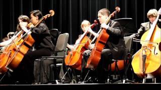 BSYO Symphony Orchestra Feb 27 2011 #3