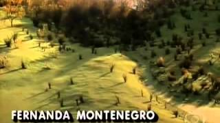 Renascer (Abertura) 1993