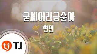[TJ노래방] 굳세어라금순아 - 현인(Hyun, In) / TJ Karaoke