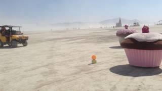 Cupcakes at Burning Man - 2013