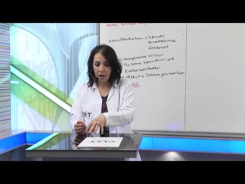 Elit Eğitim Biyoloji Dersi - Bilinçli Birey Yaşanabilir Çevre Demosudur