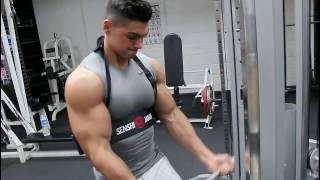 2016 - Raw Biceps Workout Andrei Deiu'