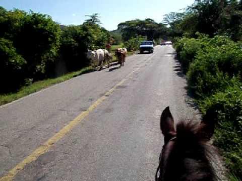 Rencontre au hasard de la route – Encuentro en la ruta
