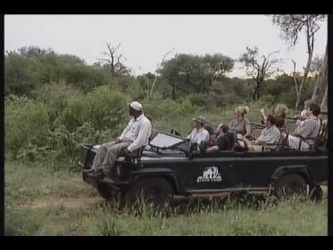 Kings Camp (Safari South Africa)