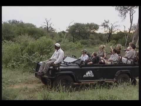 Kings Camp (Safari South Africa)