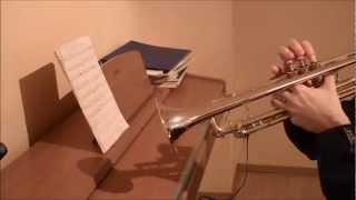 Akeboshi - Wind (trumpet cover), Naruto Ending