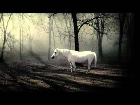 stimming-the-unicorn-dadopresents