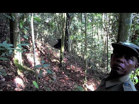 """""""Goryle we mgle"""" Uganda – HD Movie by Heliasz"""
