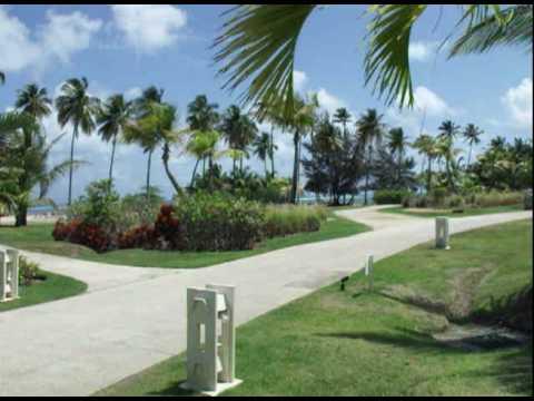 Zrii Incentive Trip – Puerto Rico 2010.dv