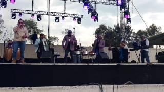 La cadenita - Guayacan orquesta (54 aniversario nezahualcoyotl)