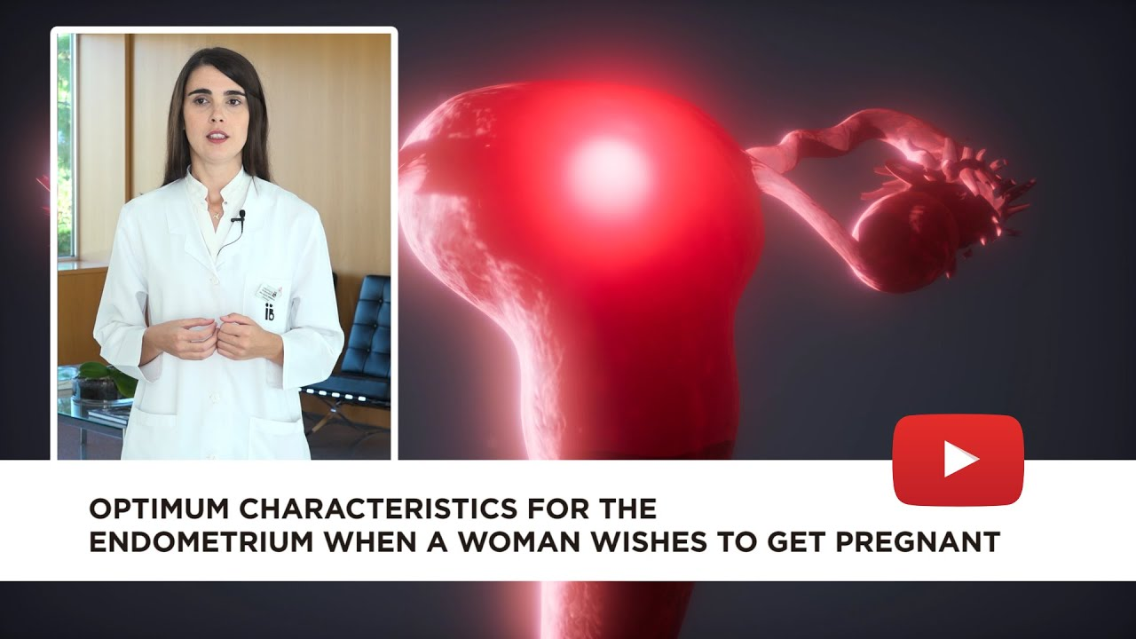 Optimum characteristics for the endometrium when a woman wishes to get pregnant