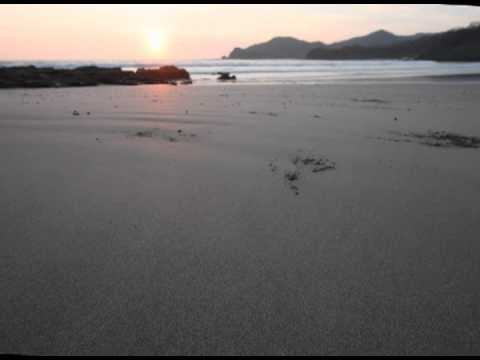 Timelapse #3 of sunset and hermit crabs on the beach