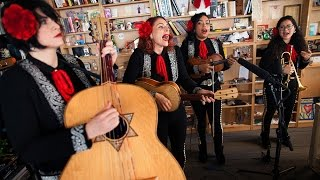 St. Paul And The Broken Bones: NPR Music Tiny Desk Concert width=