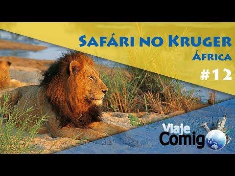 SAFÁRI NO KRUGER – ÁFRICA | VIAJE COMIGO 12 | FAMÍLIA GOLDSCHMIDT