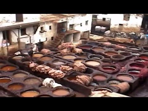 Tannery in the Medina in Fez, Moroccco