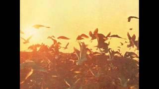 Riccardo Cocciante - Canto popolare