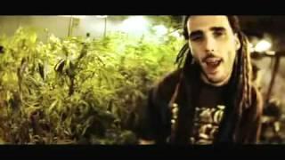SWAN FYAHBWOY - Fuma Weed
