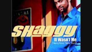 It Wasn't Me-Shagy/RikRok-Instrumental