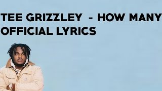 Tee Grizzley - How Many (Official Lyrics)