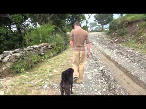 Remy & Rene in Nepal 2012: Hondje uitlaten