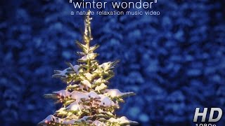 """Winter Wonder"" Nature Relaxation Christmas Music Video Banff 1080p feat. Travis Revell"