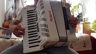 O vioara mica de-as avea accordion stile