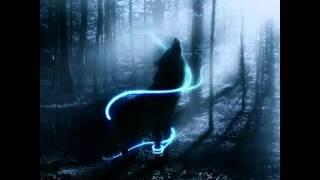 Das sind die Wölfe in mein rudel