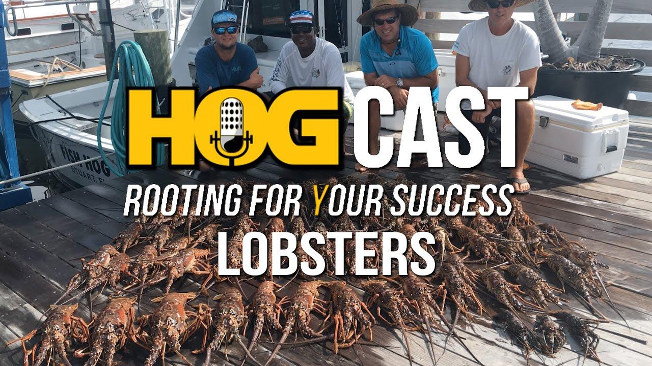 HOG Cast: Lobsters