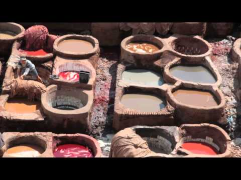 The colourful Tannery of Fez, Morocco