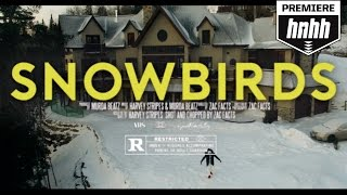 Harvey Stripes - Snowbirds
