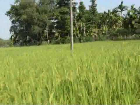 East Nepal Country side.wmv