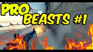 CS:GO Pro Beasts #1 ft. Niko, JDM, Hen1